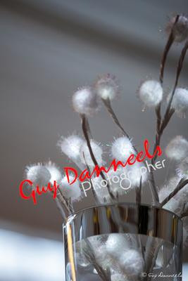 Witte sierpluisballetjes voor op tafel.